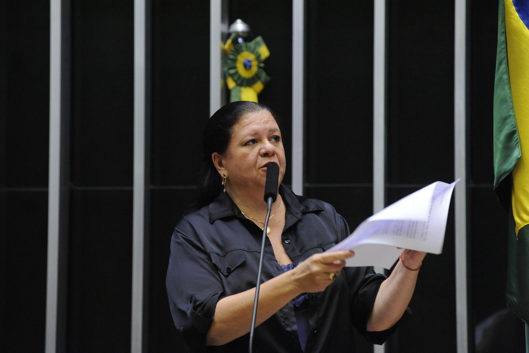 Laura Carneiro herdou capital político do pai, mas firmou trajetória própria na vida pública Foto: Divulgação